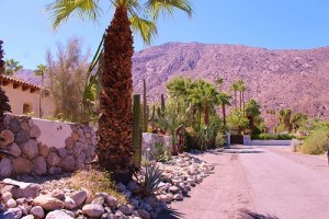 Historic Tennis Club area of palm Springs