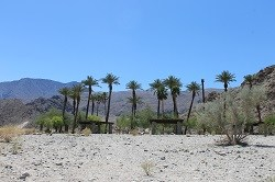 The Oasis at the top of the La Quinta Cove.