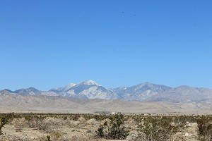 Down Valley Views!