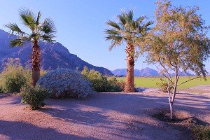 Palm Desert is home to spectacular Views & Hikes!