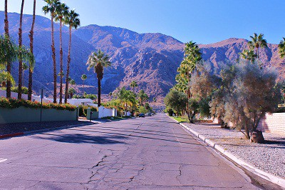 Palm Springs Adds Another Hotelthe Saguaro